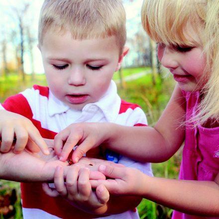 Boy and girl looking at ladybug
