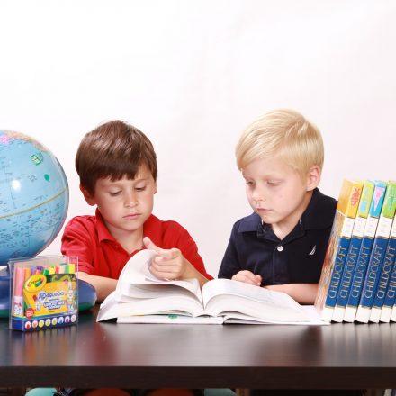 Two boys doing school work